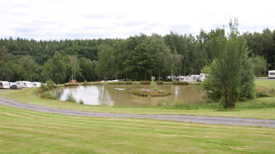 Eleven caravans are in the distance, well spaced around a large fishing pool, all surrounded by the Wyre Forest.