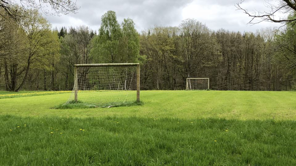 Trees surround the secluded mowed football pitch at Lodge Coppice with two netted goals.