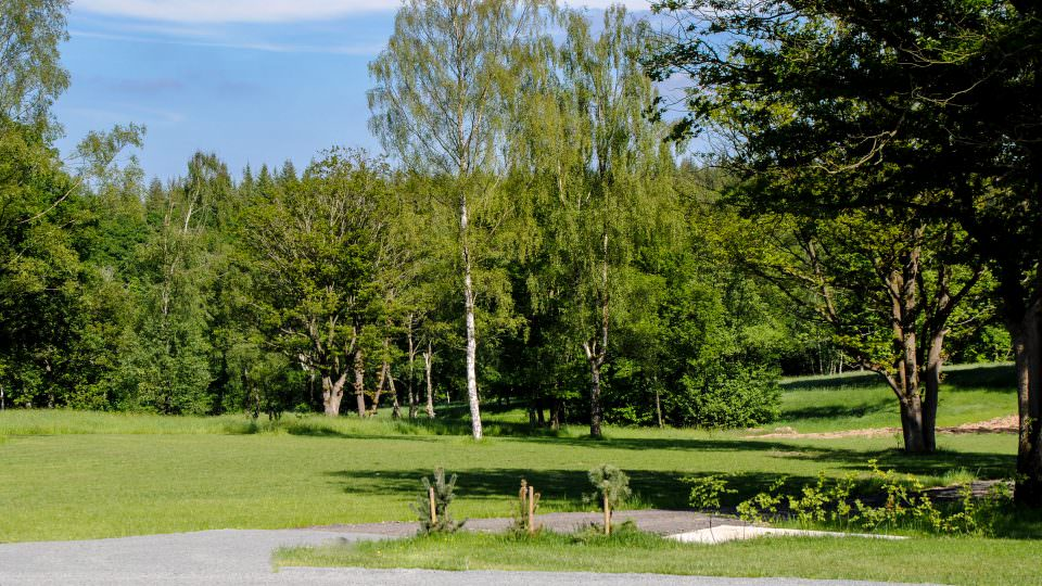 There is a gravel path and mowed grass and a secluded pitch for a new static caravan. Tall Silver Birch trees in the background touch the blue sky above.