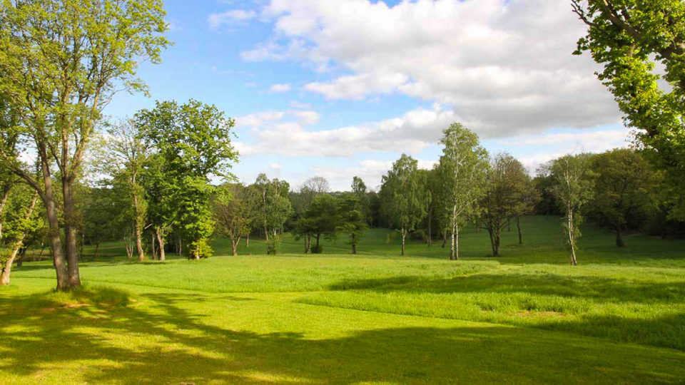 A wide open space, flanked by tall trees and grass carpeted by long shadows. A picturesque rural scene captured from around Lodge Coppice.