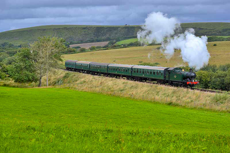 A steam train and carriages is puffing through the countryside on a summer's day.