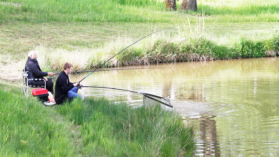Two people fishing on the grassy bank of our pool. They are sitting on low stools. One has a keep net extended as he may have a fish on the line.