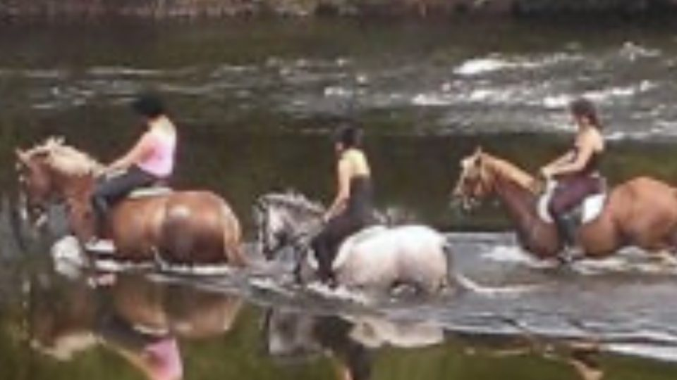 Three girls on horseback riding through the river Severn, the water is up to the horse's tummies.