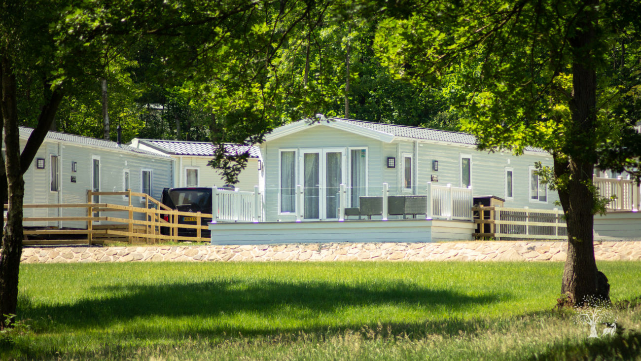 A fantastic holiday home with an extended front decking area surrounded by a modern clear glass balustrade, perfect! The caravan behind is well-spaced and the tall trees beyond in full green leaf contrasting beautifully with the creamy green static caravan. The tall trees in the foreground cast long shadows across the meadow grass.